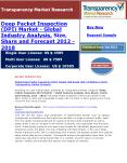 Deep Packet Inspection (DPI) Market - Global Industry Analysis, Size, Share and Forecast 2012 - 2018 PowerPoint PPT Presentation