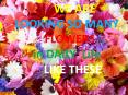 Online Flowers Delivery in Hyderabad PowerPoint PPT Presentation