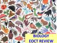 BIOLOGY EOCT REVIEW PowerPoint PPT Presentation