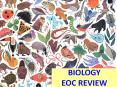 BIOLOGY EOC REVIEW PowerPoint PPT Presentation