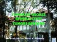 TUMORILE OSOASE GENERALITATI TUMORI BENIGNE PowerPoint PPT Presentation