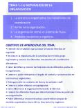 TEMA 1: LA NATURALEZA DE LA ORGANIZACI PowerPoint PPT Presentation