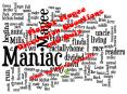 Maniac Magee Discussion Questions and Quiz PowerPoint PPT Presentation
