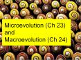 Microevolution (Ch 23) and Macroevolution (Ch 24) PowerPoint PPT Presentation