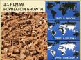 3.1 Human population growth PowerPoint PPT Presentation