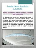 Tensile Fabric Structures Company PowerPoint PPT Presentation