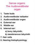 Sense organs. The Audiovestibular organ PowerPoint PPT Presentation
