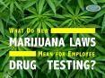 What Do New Marijuana Laws Mean for Employee Drug Testing? PowerPoint PPT Presentation
