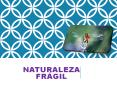 NATURALEZA FRAGIL PowerPoint PPT Presentation