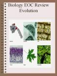 Biology EOC Review Evolution PowerPoint PPT Presentation