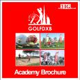 Golf lessons in Dubai PowerPoint PPT Presentation