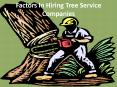 Factors In Hiring Tree Service Companies PowerPoint PPT Presentation