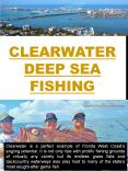 Clearwater Deep Sea Fishing PowerPoint PPT Presentation