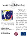 Marie Curie Fellowships PowerPoint PPT Presentation