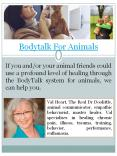 bodytalk system for animals PowerPoint PPT Presentation