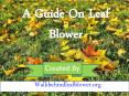An Ultimate Guide for Leaf Blower PowerPoint PPT Presentation