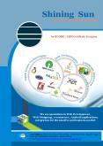 Software Development Company PowerPoint PPT Presentation