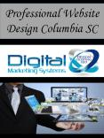 Professional Website Design Columbia SC PowerPoint PPT Presentation