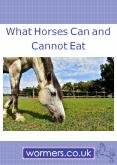 What Horses Can and Can't Eat PowerPoint PPT Presentation