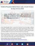 Codeine Phosphate Industry Demand 2020 By Type, Growth Forecast 2020 PowerPoint PPT Presentation