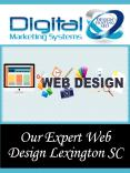Our Expert Web Design Lexington SC PowerPoint PPT Presentation