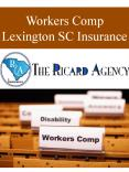 Workers Comp Lexington SC Insurance PowerPoint PPT Presentation