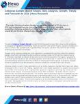 Cellulose Acetate Market Overview and Forecast, 2014 to 2024 PowerPoint PPT Presentation