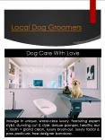 Dog Groom West Hollywood CA (1) PowerPoint PPT Presentation