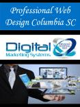 Professional Web Design Columbia SC PowerPoint PPT Presentation
