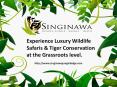 Safari Rate - Luxury Hotels in Kanha National Park PowerPoint PPT Presentation