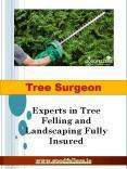 Tree Surgeon Dublin (1) PowerPoint PPT Presentation