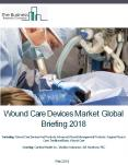 Wound Care Devices Market Global Briefing 2018 PowerPoint PPT Presentation