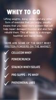 Best whey protein powders in the Market PowerPoint PPT Presentation