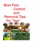 Best Pest Control and Removal Tips for Your Property (1) PowerPoint PPT Presentation