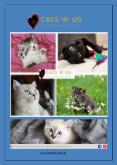 Why Should You Choose Cat Hotel For Your Cat on Your Next Trip? - Cats R Us PowerPoint PPT Presentation