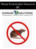 Mouse Exterminator Vancouver BC PowerPoint PPT Presentation