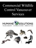 Commercial Wildlife Control Vancouver Services PowerPoint PPT Presentation