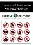 Commercial Pest Control Vancouver Services PowerPoint PPT Presentation