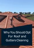 Why You Should Opt For Roof and Gutters Cleaning PowerPoint PPT Presentation