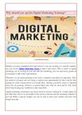 Why should you opt for Digital Marketing Training? PowerPoint PPT Presentation
