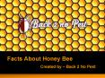 Interesting Facts About Honey Bee PowerPoint PPT Presentation