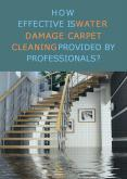 How Effective Is Water Damage Carpet Cleaning Provided By Professionals? PowerPoint PPT Presentation