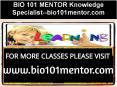 BIO 101 MENTOR Knowledge Specialist--bio101mentor.com PowerPoint PPT Presentation