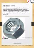 MS Hex Nut PowerPoint PPT Presentation