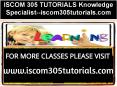 ISCOM 305 TUTORIALS Knowledge Specialist--iscom305tutorials.com PowerPoint PPT Presentation