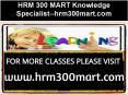 HRM 300 MART Knowledge Specialist--hrm300mart.com PowerPoint PPT Presentation