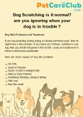 Dog Scratching is it normal? are you ignoring when your dog is in trouble ? PowerPoint PPT Presentation