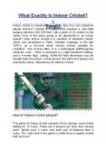 What Exactly Is Indoor Cricket? - TORQ03 PowerPoint PPT Presentation