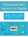 Professional SEO Agency Los Angeles PowerPoint PPT Presentation