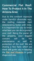 Commercial Flat Roof: How to protect it in the Arizona area PowerPoint PPT Presentation